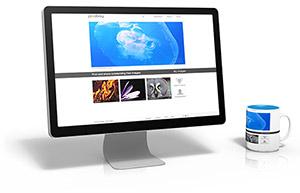 הנגשת אתרי אינטרנט עבור מאותגרי ראיה ומוגבלים